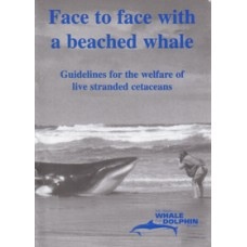 Face to Face with a Beached Whale